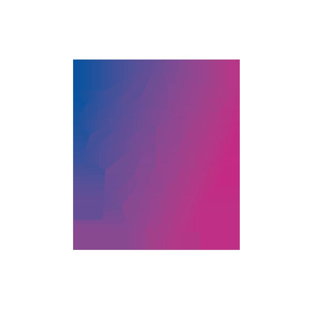 schild-logo-netz